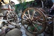 продам деревянные колеса одесса