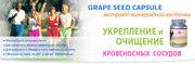 Экстракт виноградной косточки- Grape seed capsule (120 капс.)Вся Укр.