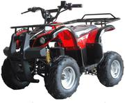 Новинка! Электрический квадроцикл HengLi ATV50-002E: 500W,  45 км/ч