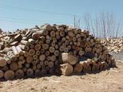 Продам дрова в Одесской и Николаевской области.