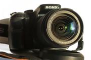 Зеркальный «Sony-A100». Отличный полупрофессиональный фотоаппарат!