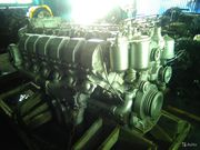 Куплю двигателя ямз-236, 238,  ямз-8401 в любом количестве