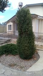 Продам дом с ремонтом в Холодной балке на участке 17 соток