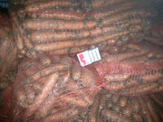 Продам морковь товарную и некондицию,  Овидиополь