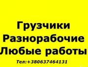 Грузчики разнорабочие подсобные рабочие город Южный Одесской обл.