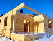 Строительство каркасных и деревянных домов,  беседок,  террас,  мебели