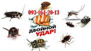 Уничтожение тараканов,  блох,  клопов,  мышей и крыс.